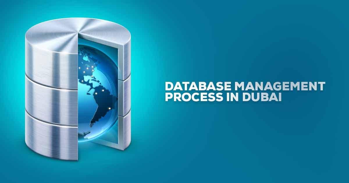 Database management Company in Dubai